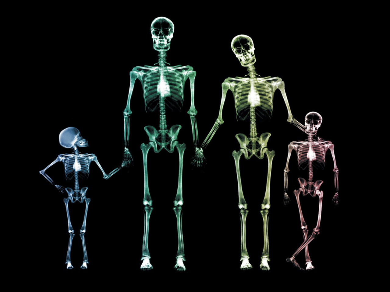 3d teen x-ray nude pictures